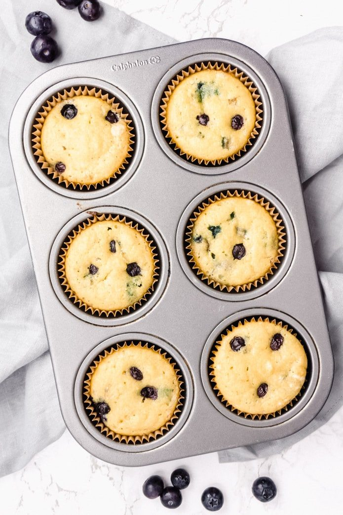low carb and gluten free blueberry muffins in a muffin tin